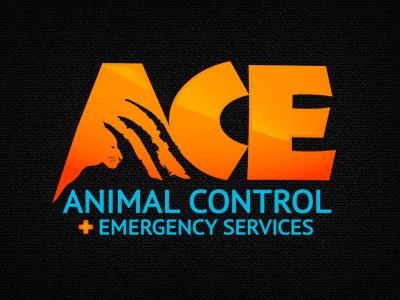 ACE logo logo branding
