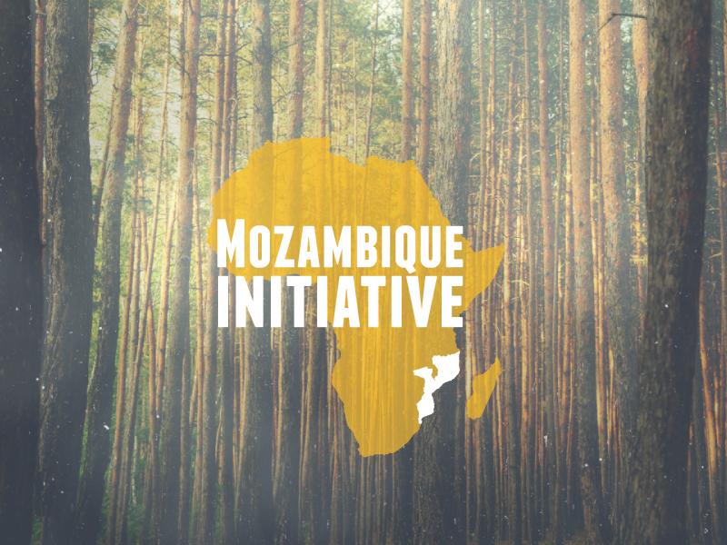 Mozambique Initiative // logo design mozambique initiative mozambique initiative brand hook creative identity logo