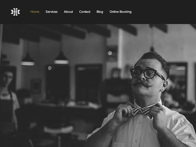 Hudson Hawk // website + identity