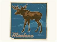 Lyons Dribbble Montana