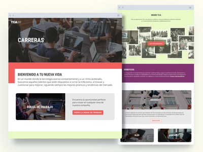 TCA Software Solutions — Carreras redesign ui website