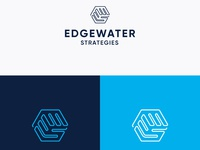 Edgewater Consulting Firm