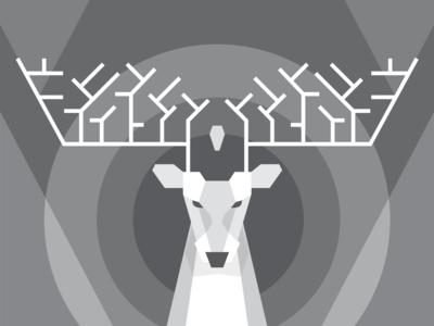 Magical White Deer