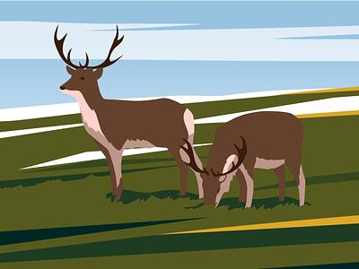 Reindeers sky prairie nature flat editorial arctic caribou science reindeer deer vector illustration