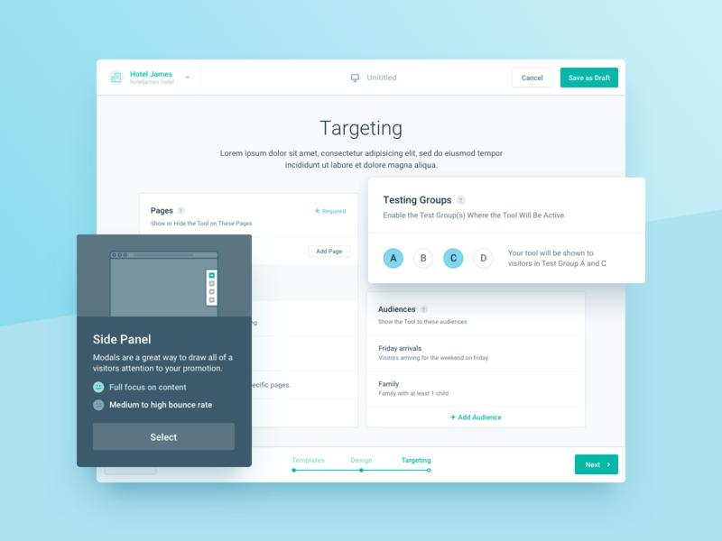 Target Audience Management Webapp saas radio button widget webapp cards selection