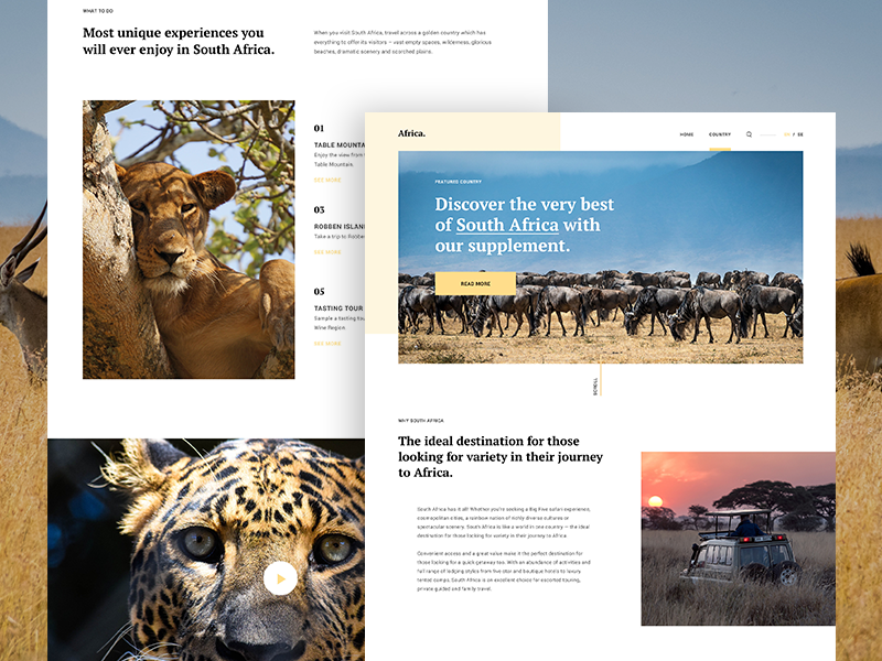 Africa Travel Guide - Country Page WIP guide travel africa country malaysia website web ux ui interface