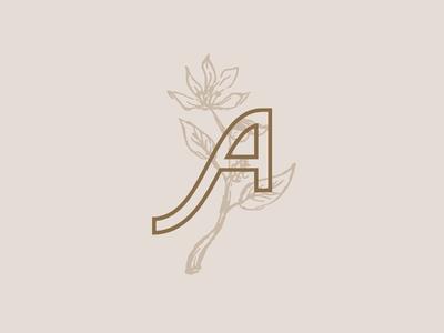 Type & Flore Exploration