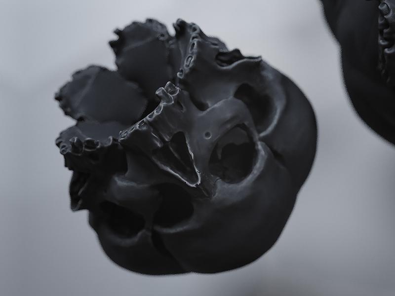 Forbidden fruits 3d artwork wreath skull mirror illustration composition 3d art