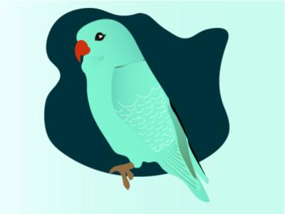 Parrot parrotdesign flatdesignparrot design illustration flatdesign minimal ui graphic design flatdesign of parrot parrot illustration illustration of a parrot parrot