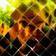 Richard segura