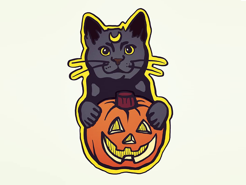 Cat Pumpkin magic witch luna sticker jackolantern illustration stickermule halloween pumpkin cat