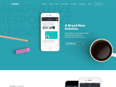 TheSimple - WP Theme - App Template