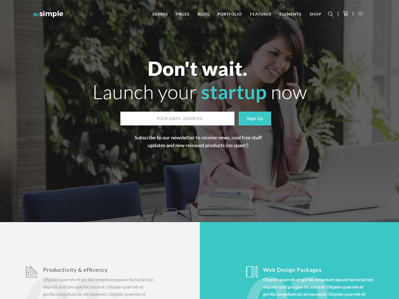 TheSimple - WP Theme - Startup Template ui web design wordpress theme startup themes wordpress