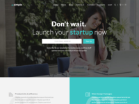 TheSimple - WP Theme - Startup Template