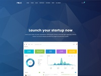 Startup Demo - Folie WordPress Theme