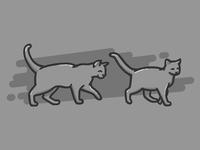 Follow Cat