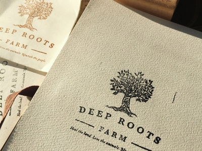 Deep Roots Farm Logo logo artist typography logo art farming farm illustration branding and identity logo design logo