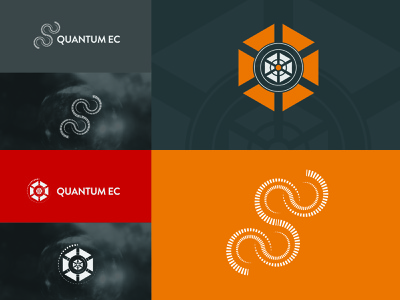 Professional Logo  Design logodesign branding logo graphicsdesign