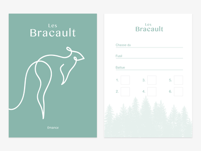 Les Bracaults minimalists simple offline turqouise print illustration