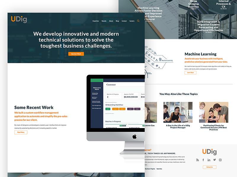 Udig home consulting ui ux design web design website web