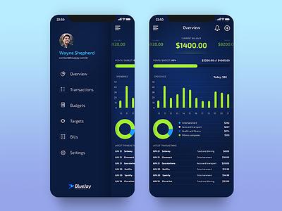 BlueJay - Dashboard and Menu dashboard ui light chart finance overview dashboard menu app iphone
