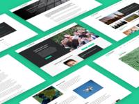 Web Design: The Bennett Institute