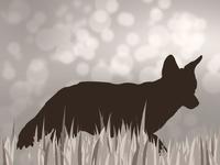 Hunting App Default Images 5/6