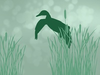 Hunting App Default Images 6/6