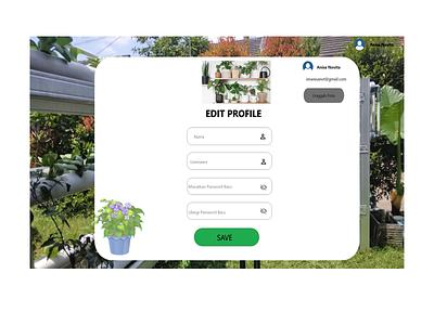 Project Lomba Web Design uiuxdesign ux ui design
