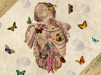 Surreal Stories: Collection 1 - Printable Organs