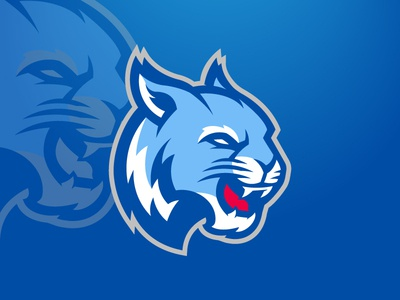 Blue Wildcat Logo FOR SALE