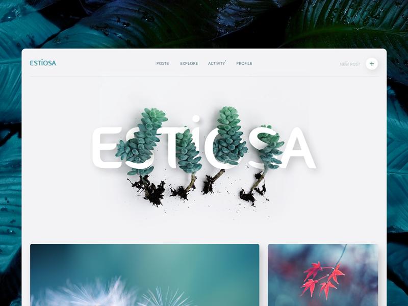 Estiosa ui web clean volume minimal website turquoise blue green flower plant