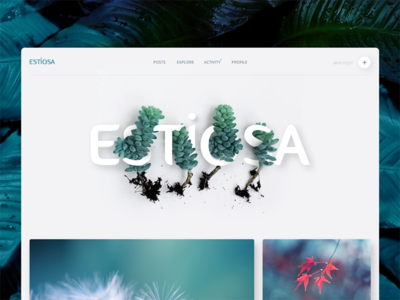 Estiosa ui web clean volume minimal website turquoise blue green flower plant