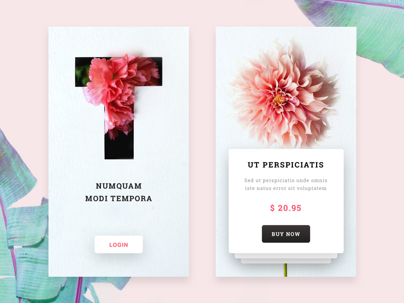 Flower Shop Mobile App By Outcrowd Dribbble Dribbble