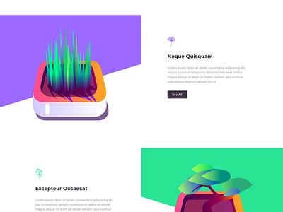 Cactus - Landing Page illustration one clean design web ux ui page landing