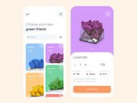 Mobile app - Iceland moss