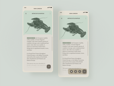 Daily UI 10 - Social Share app dailyui museum daily ui 10 dailyuichallenge minimal design ui