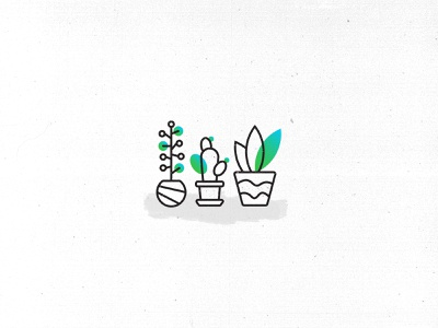 Plants illustration plants plant