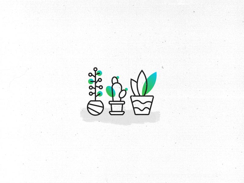 Plants illustration plants plant