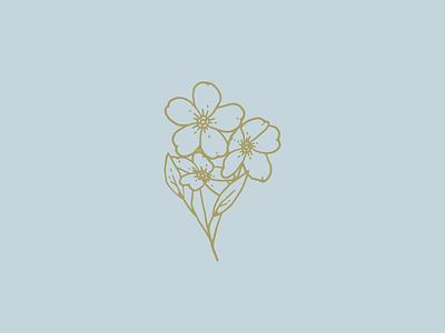 Forget Me Not identity illustration branding flowers