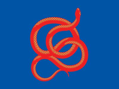 Snake animal vector graphic illustration snake design