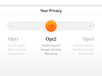 Privacy Slider