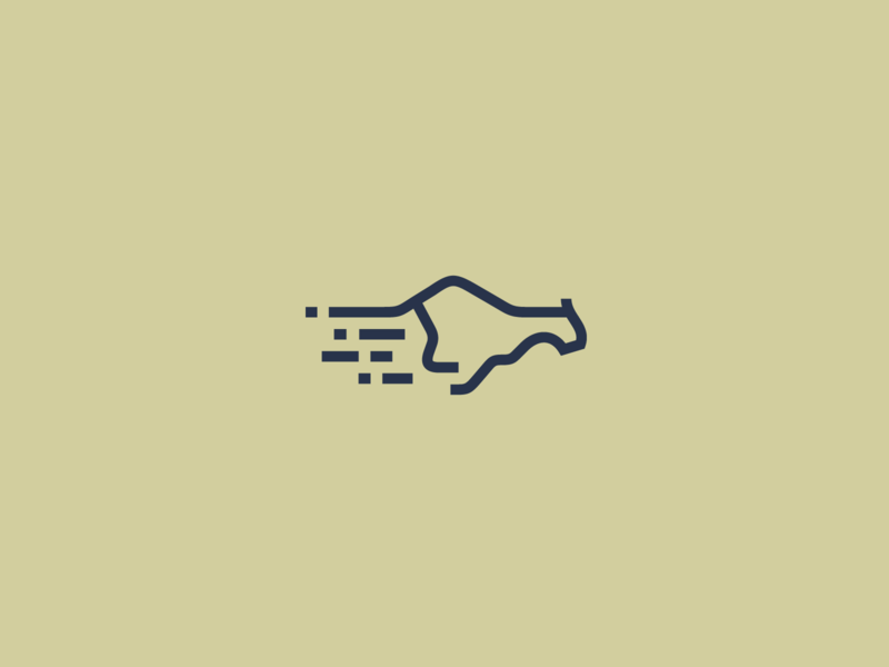 Coding Cheetah