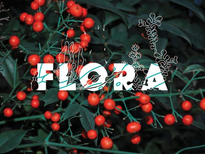Flora photography editorial typography illustration leaves nature flowers flora