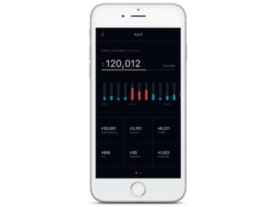 Expanse Analytics analytics expense dailyui