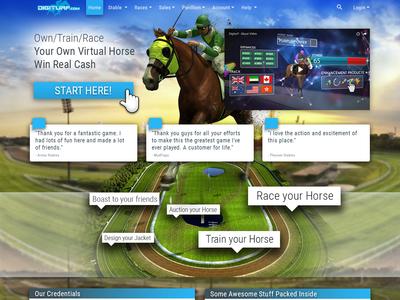 Digiturf Homepage ui design
