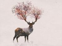 Double Exposure Fairy Deer