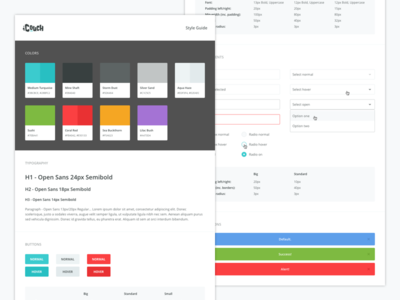 iCouch Style Guide style guide notifications form elements typography interface ui palette colors guide style