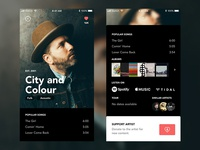 Support Artist Concept App