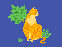 My OrangeCat-小毯